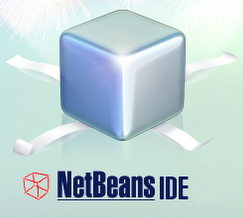 Pro Developer tested NetBEans 6.5 Beta